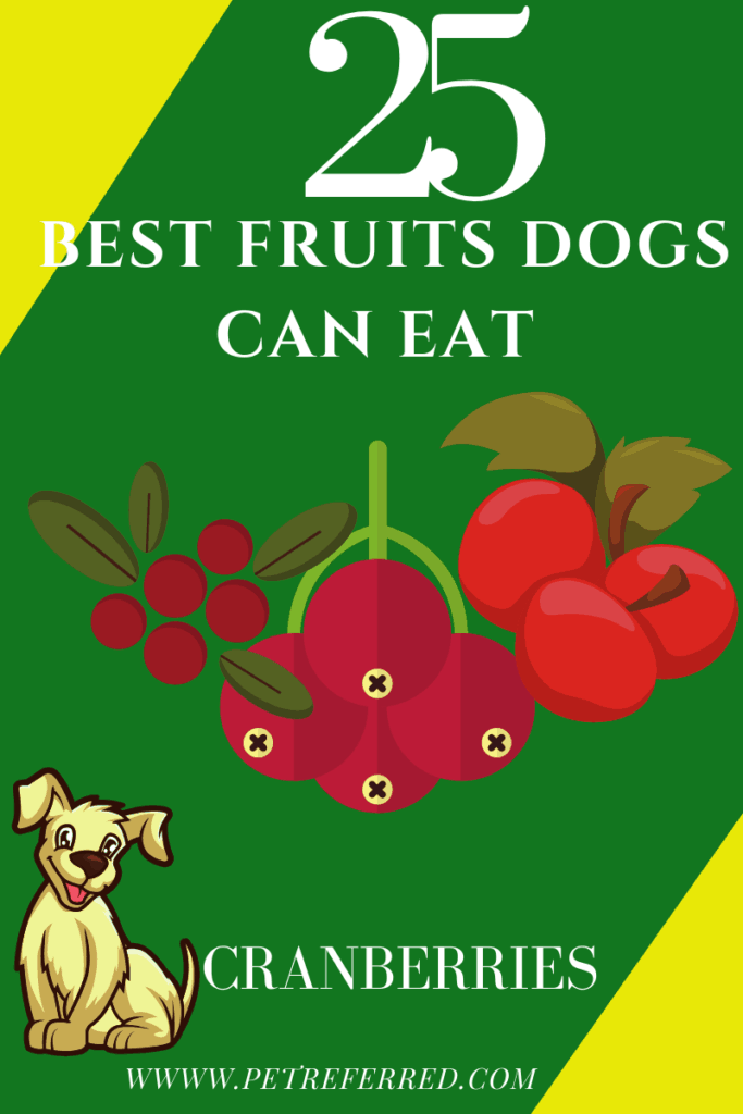 are cranberries good for dogs