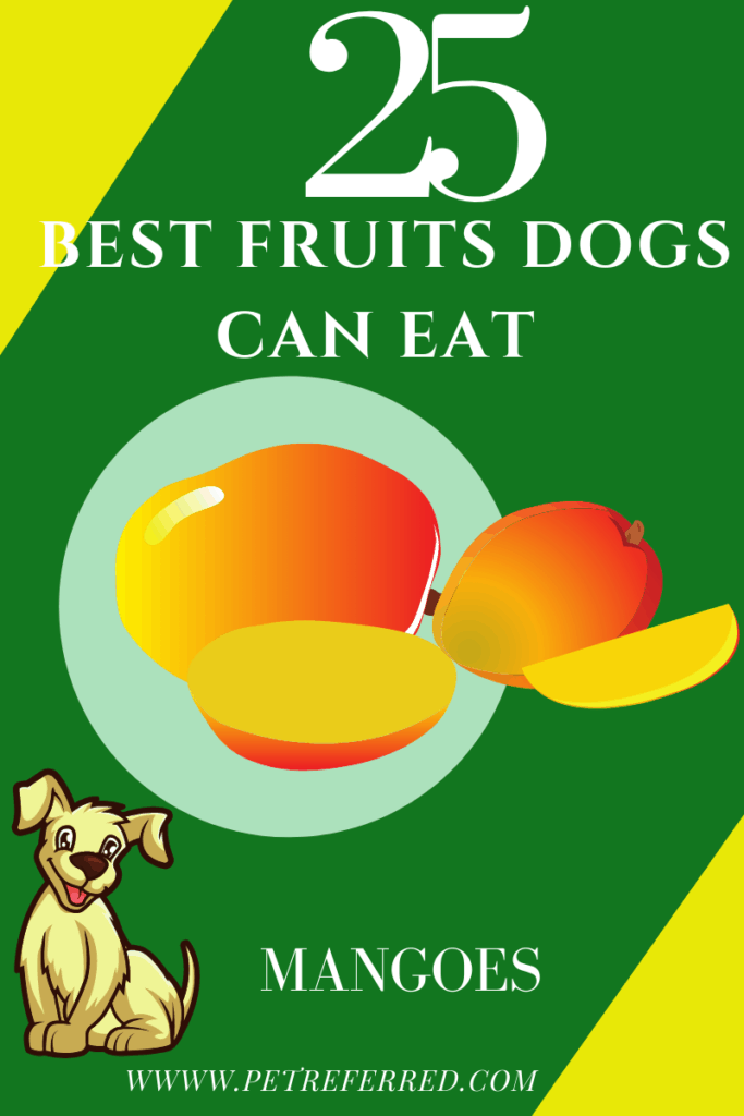 are mangoes good for dogs