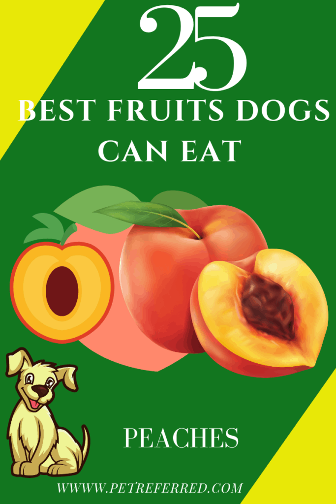 are peaches good for dogs