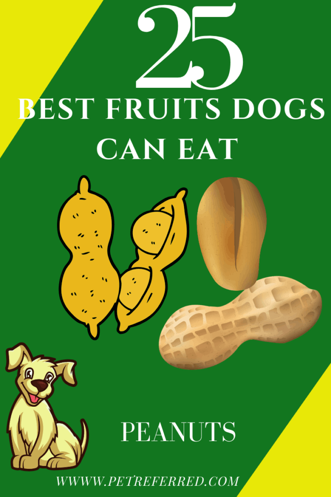 are peanuts good for dogs