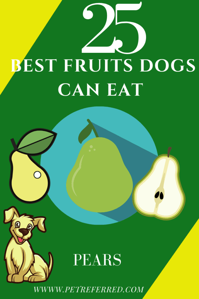 are pears good for dogs