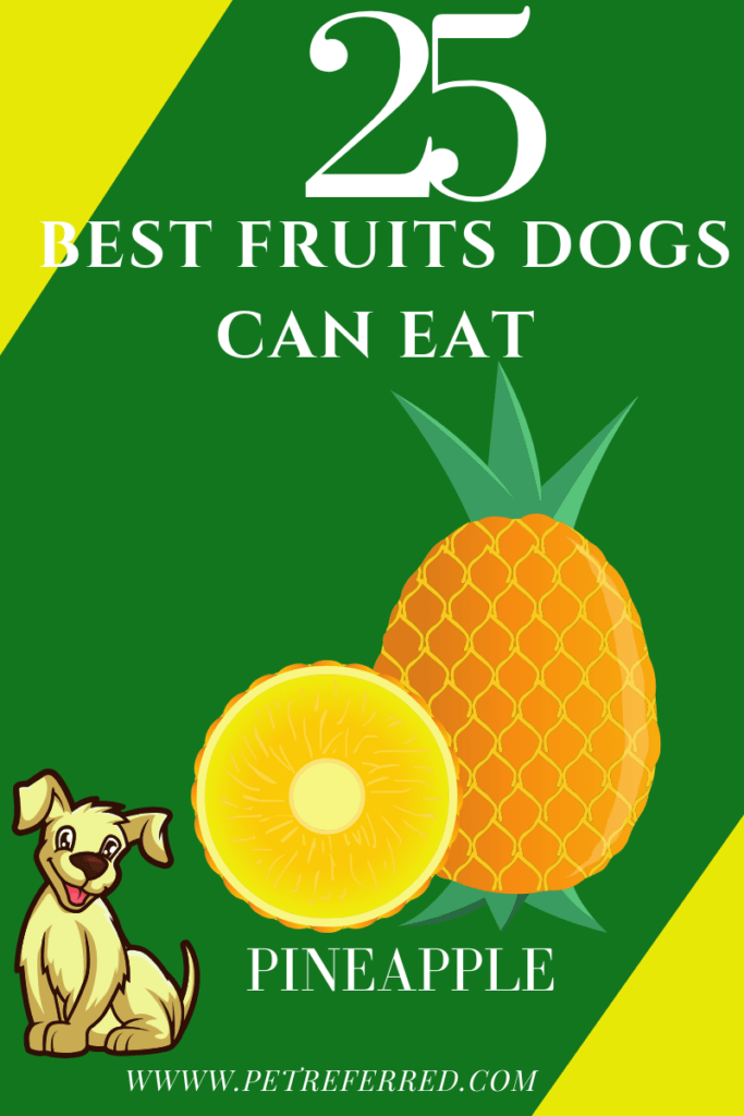 Are pineapples good for dogs