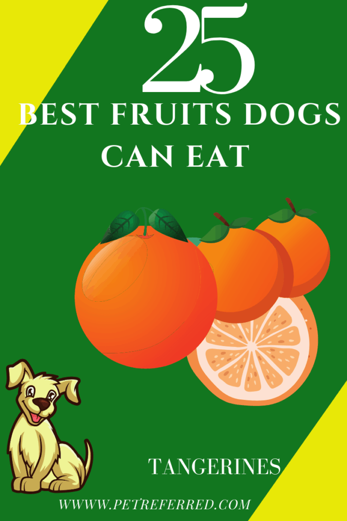 Are tangerines good for dogs