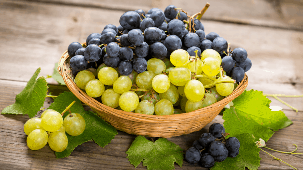 can dogs eat grape fruits?