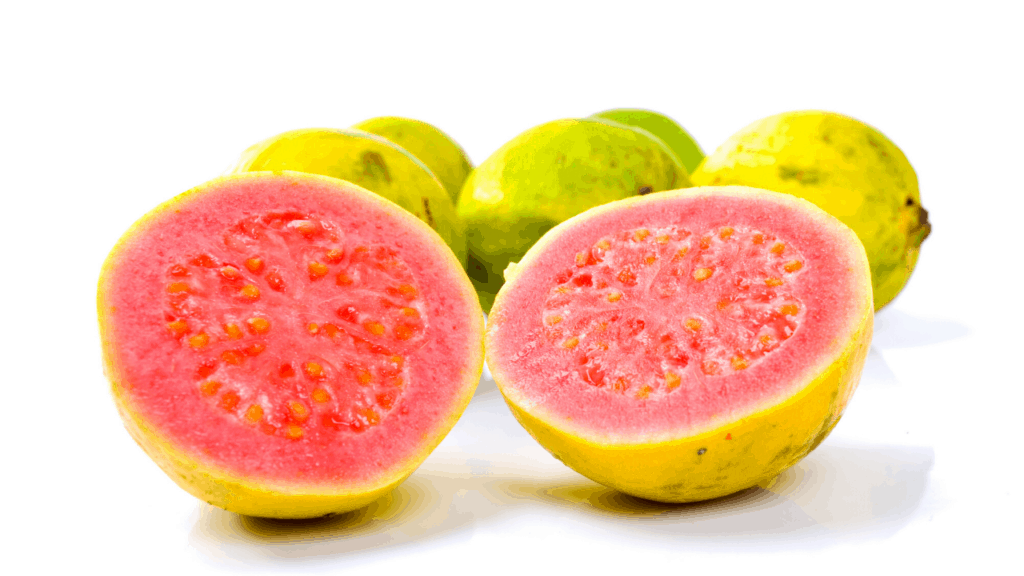 can dogs eat guava fruits
