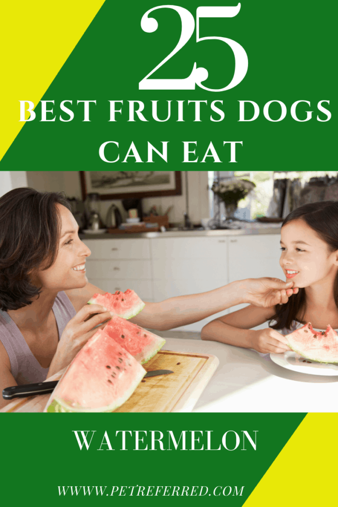 Is water melon good for dogs