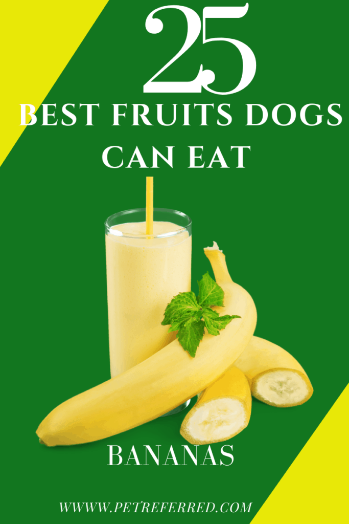 Is a banana good for a dog?