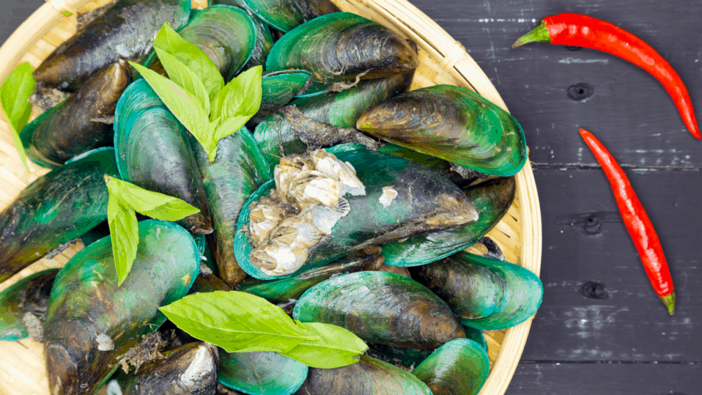 can dogs eat Green-Lipped Mussels